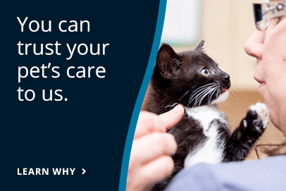 You can trust your pet's care to us.