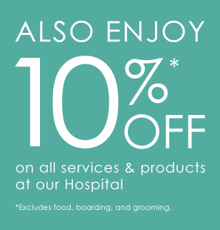Save 10% When You Shop Online