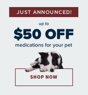 Shop Now Online, Southwind Animal Hospital