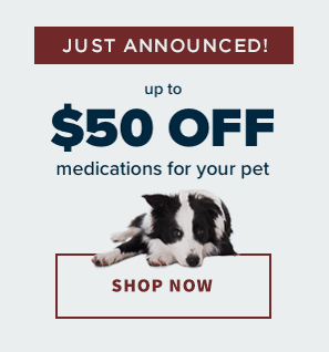 Shop Online Now, Stage Road Animal Hospital