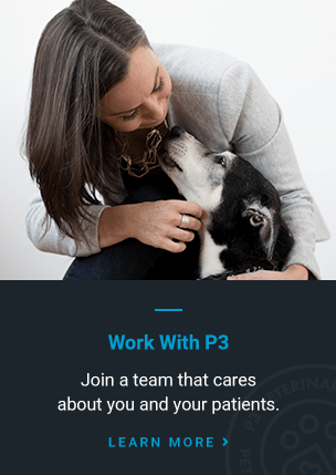 Work With P3