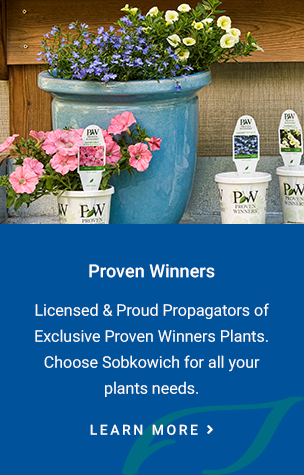 Proven Winners, Sobkowich Green Houses