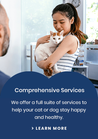 Services Olds Pet Clinic | Olds, AB