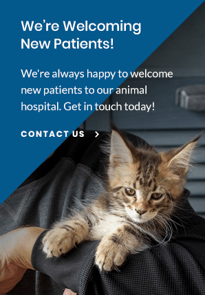 New Patients Apple Valley Animal Hospital | Apple Valley Vet