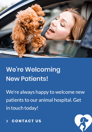 New Patients Park Pet Hospital | Lethbridge Vet